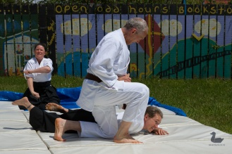 Aikido Tenshindo Wellington, Demonstration at Brooklyn Market, December 2018. Copyright © 2018 Silver Duck. All Rights Reserved.